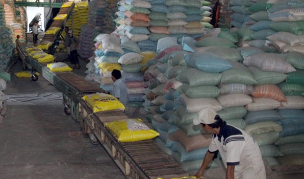 Vietnam rice industry should focus on quality: experts hinh anh 1