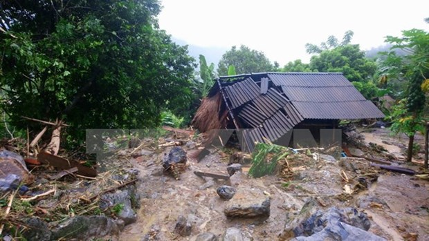 Japan donates relief aid to Vietnamese flood-hit localities hinh anh 1