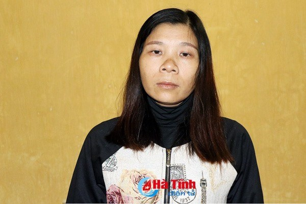 Woman arrested for alleged subversion activities hinh anh 1