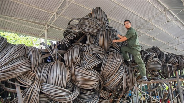 Artists to showcase works created in forest hinh anh 1