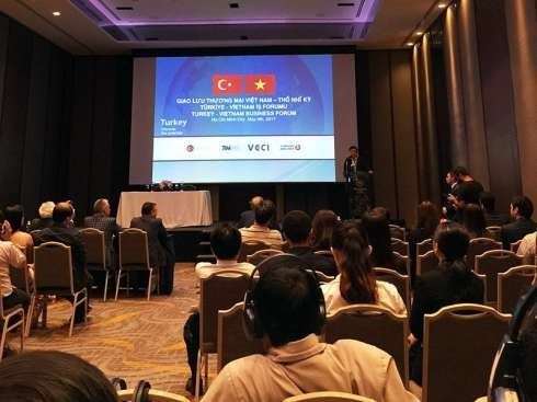 Vietnamese, Turkish enterprises seek to boost connectivity hinh anh 1