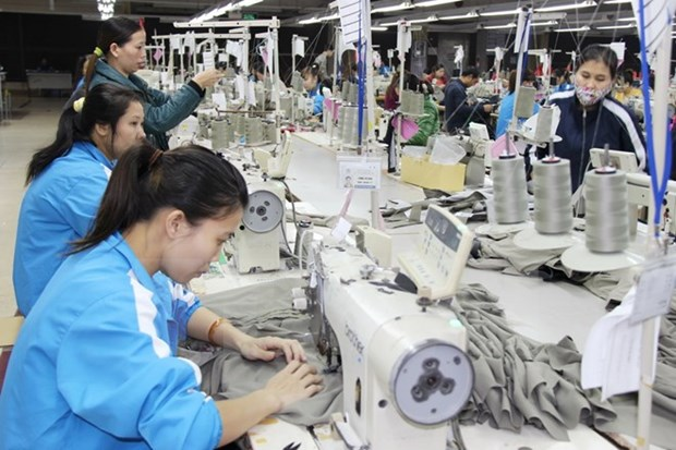 Women contribute to social wellbeing, economy: researcher hinh anh 1