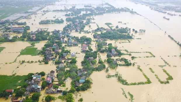 Vietnamese Embassy in Malaysia supports flood victims at home hinh anh 1