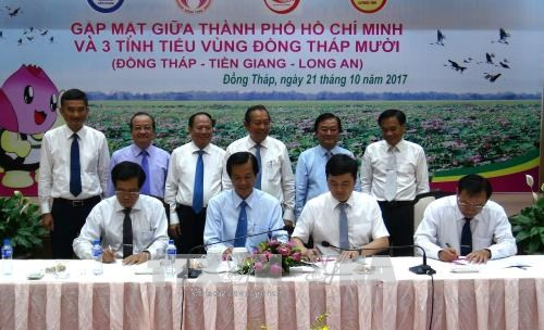HCM City boosts tourism ties with Dong Thap Muoi sub-region hinh anh 1