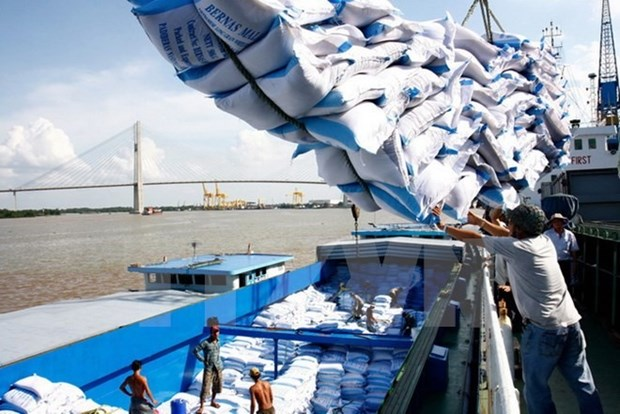 VFA hikes rice export target on strong demand hinh anh 1