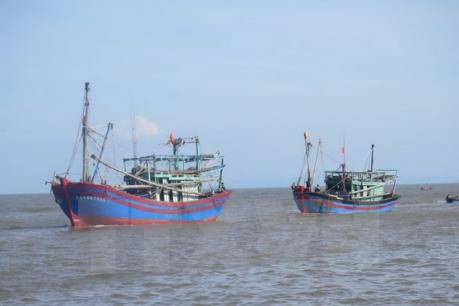 VASEP, Vietnam Coast Guard step up cooperation against illegal fishing hinh anh 1
