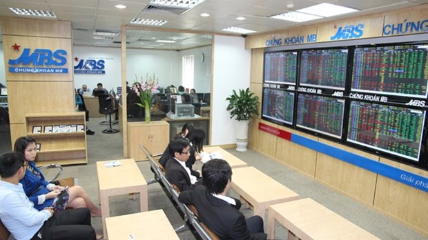 Shares rise again, caution lingers hinh anh 1