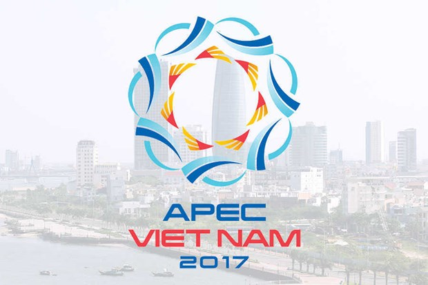 APEC 2017 affirms Vietnam's position and capacity hinh anh 1