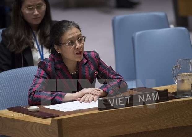 Vietnam active in UN peacekeeping operations hinh anh 1
