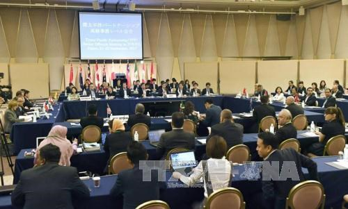 TPP negotiators meet in Japan hinh anh 1