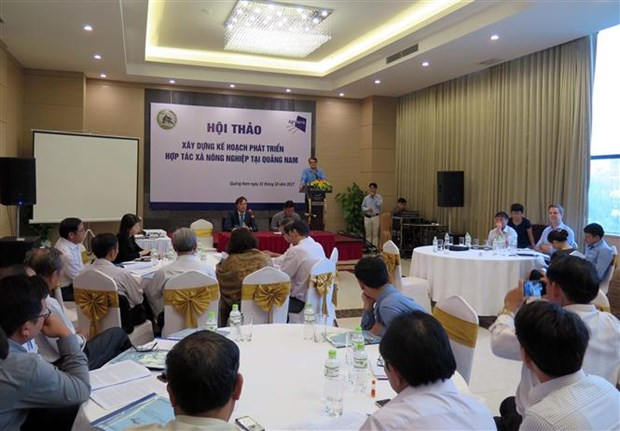 Dutch organisation aids agricultural cooperatives in Quang Nam hinh anh 1