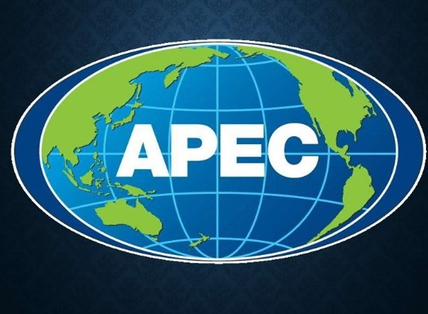 APEC 2017 to turn challenges into driving force hinh anh 1