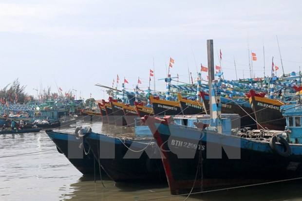 South coastal localities brace for storm Damrey hinh anh 1