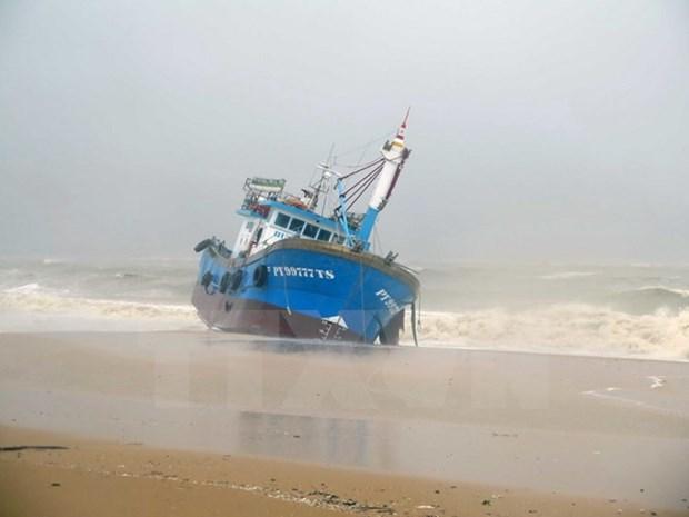 Storm Damrey makes landfall in south central coast hinh anh 1