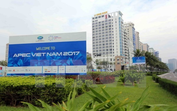 APEC 2017: Russia backs host Vietnam's priorities hinh anh 1