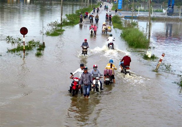 Vietnam Fatherland Front offers aid to storm victims hinh anh 1