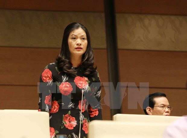 Lawmakers discuss crime combat on November 6 hinh anh 1
