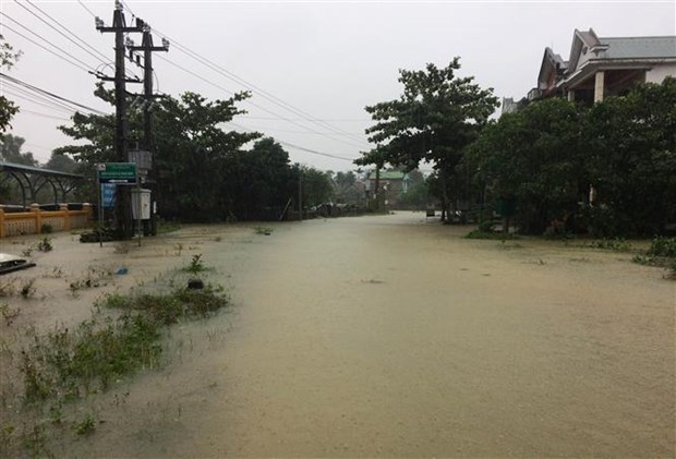 Russia offers 5 mln USD aid to Vietnam in flood recovery hinh anh 1