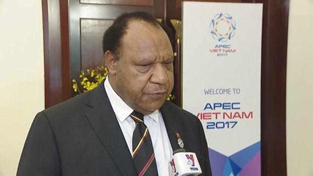 APEC 2017: Vietnam's hosting good experience for Papua New Guinea hinh anh 1