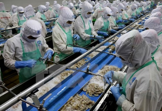 Vietnam enjoys strong growth in shrimp exports to RoK hinh anh 1
