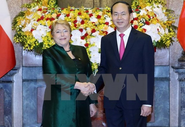 Vietnam, Chile Presidents discuss measures to forge bilateral ties hinh anh 1