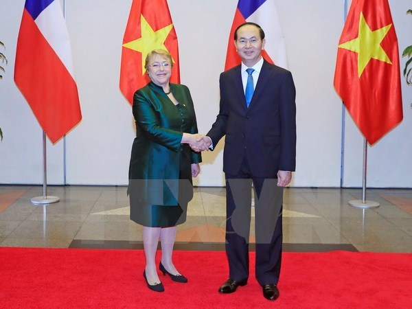 Vietnam, Chile affirm bilateral comprehensive partnership's importance hinh anh 1