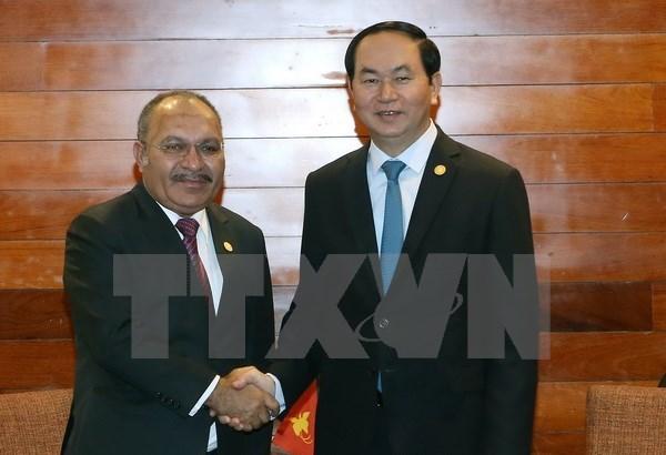 APEC 2017: Vietnam, Papua New Guinea enhance cooperation hinh anh 1