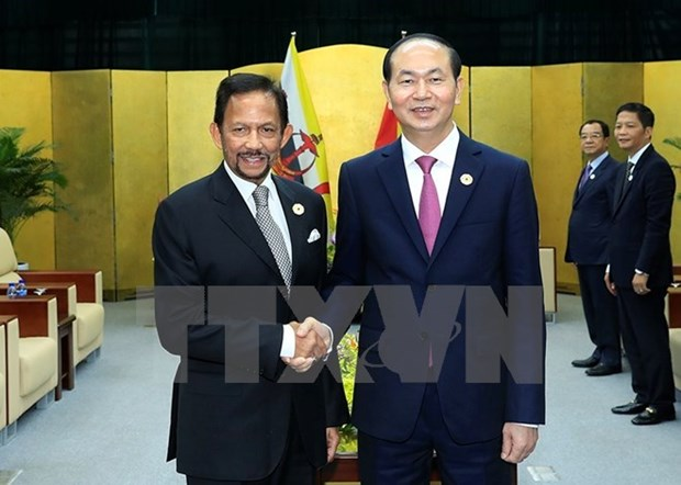APEC 2017: President Tran Dai Quang welcomes Brunei's Sultan hinh anh 1