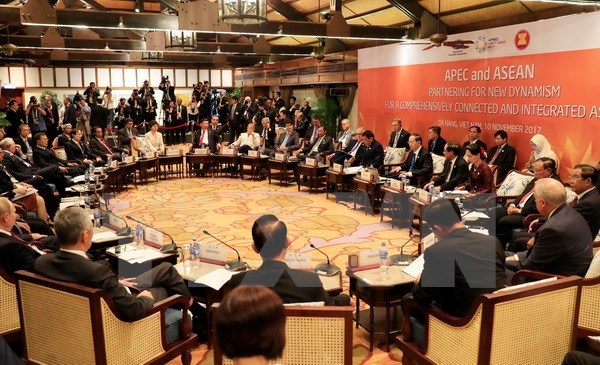 Chair of APEC-ASEAN Leaders' Informal Dialogue issues press statement hinh anh 1