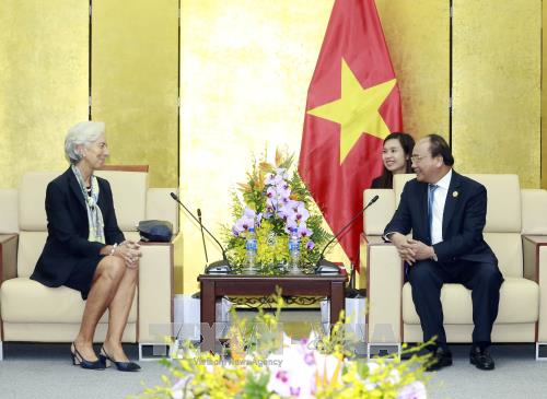 APEC 2017: Prime Minister receives IMF Managing Director hinh anh 1