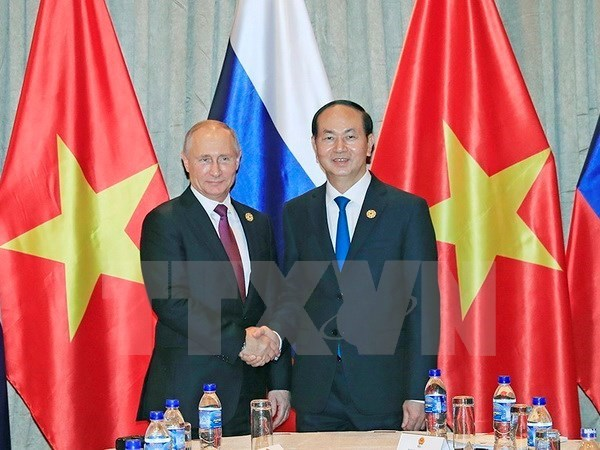 APEC 2017: Vietnamese, Russian Presidents hold meeting hinh anh 1