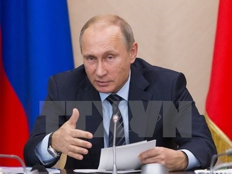 Russian President commends topics of APEC 2017 meeting hinh anh 1