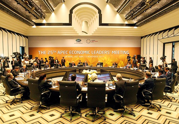 25th APEC Economic Leaders' Meeting opens hinh anh 1