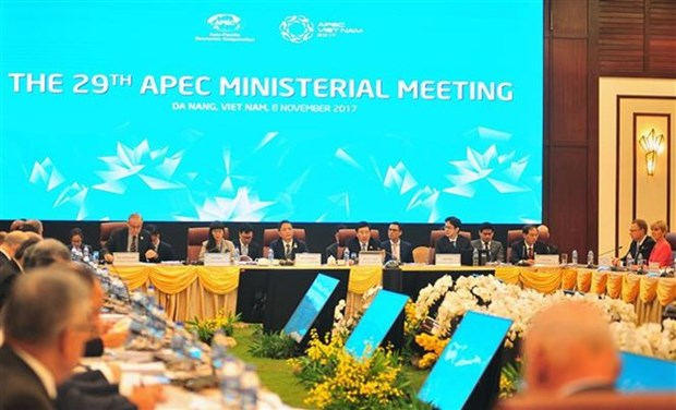 APEC 2017: Ministers issue joint statement hinh anh 1