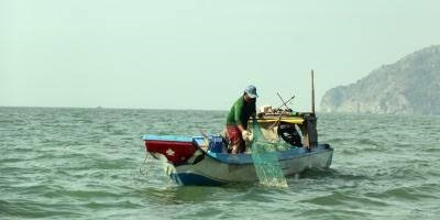 Vietnam seafood mulls action on EU warning hinh anh 1