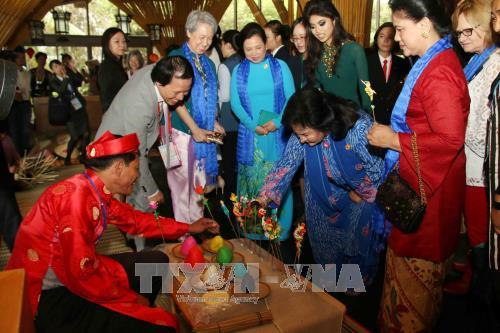 APEC 2017: Wives of APEC leaders visit ancient Hoi An city hinh anh 1