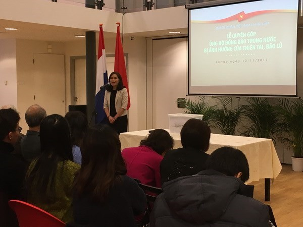 Embassy in Netherlands raises funds for flood-hit victims hinh anh 1