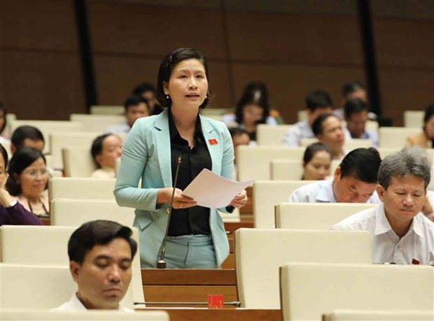 NA adopts Forestry Law, discusses revised Competition Law hinh anh 1