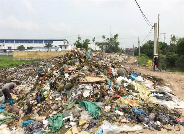 Domestic rubbish keeps piling up hinh anh 1