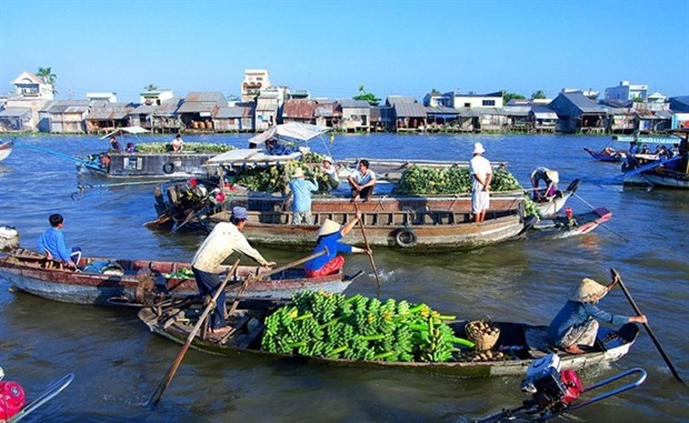 Floating markets in south-west Vietnam a sight to behold hinh anh 1