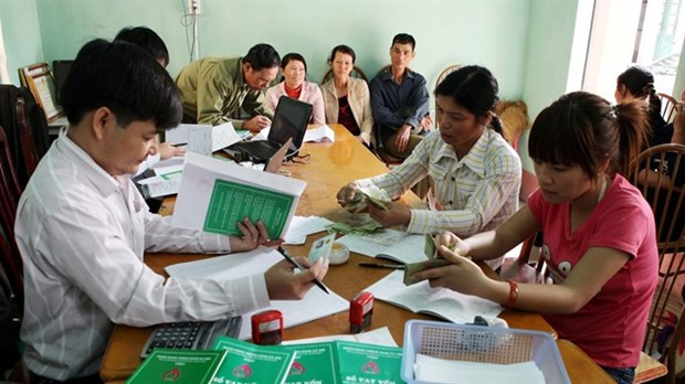 Few rural families able to access credit: report hinh anh 1