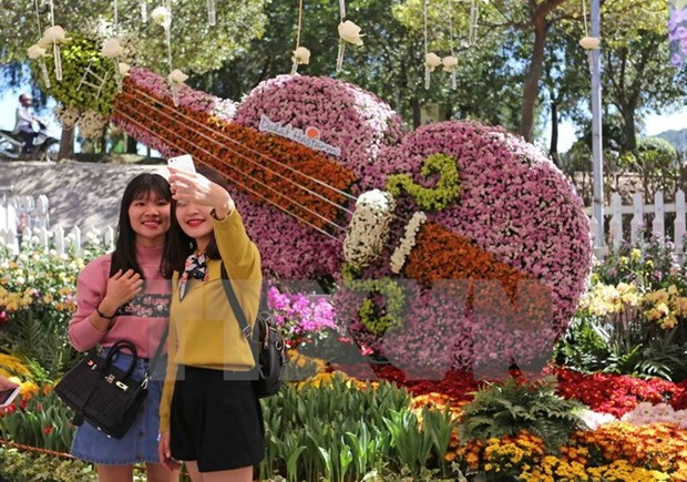 Da Lat Flower Festival to be organised from December 23-27 hinh anh 1