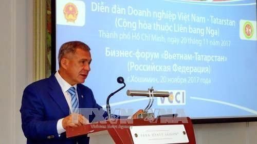 HCM City seeks cooperation with Russia's Tatarstan Republic hinh anh 1