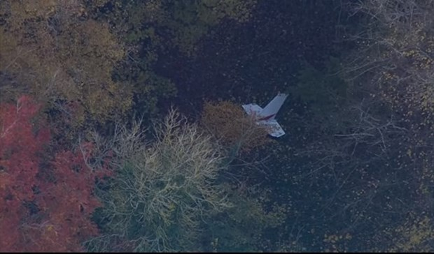 Vietnamese pilot killed in UK mid-air collision hinh anh 1