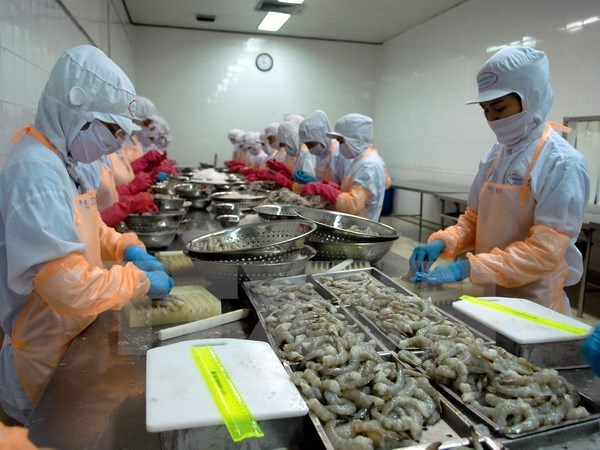 Ca Mau strives to earn 1.1 billion USD from aquatic export this year hinh anh 1
