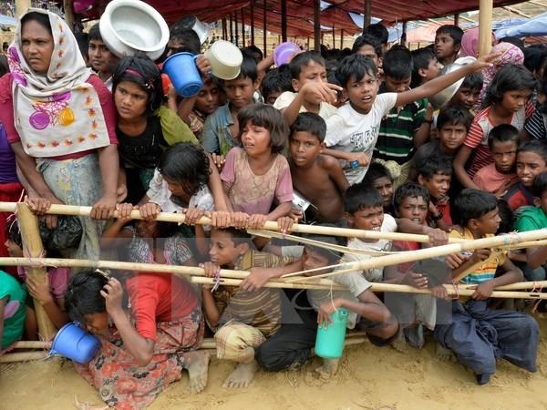 Myanmar, Bangladesh accept solution to Rohingya crisis hinh anh 1
