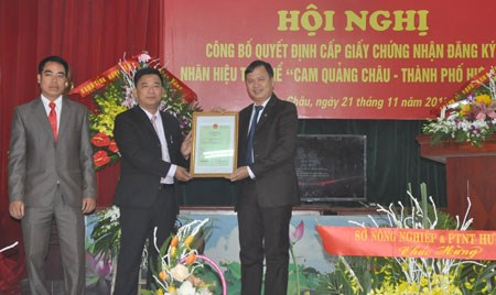 Hung Yen orange receives collective brand recognition hinh anh 1