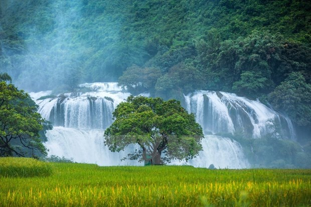 Tourism brings new hope for poverty reduction in Northwest hinh anh 4