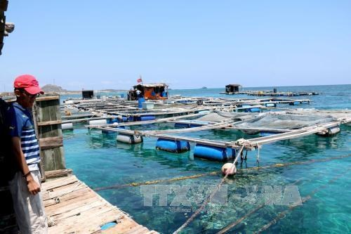 Khanh Hoa hosts ASEAN-India workshop on blue economy hinh anh 1