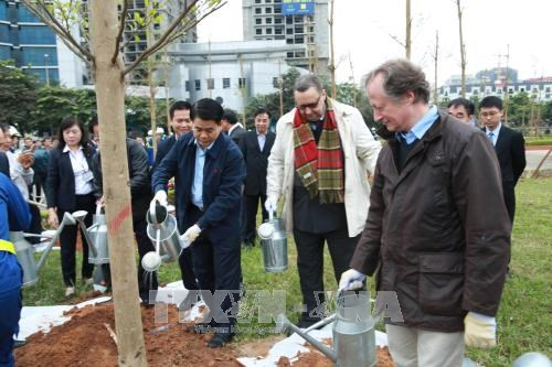 Hanoi plants 100 trees to mark Finland's 100 years of independence hinh anh 1